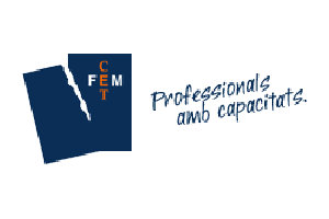 FEM-CET Professionals with capacities